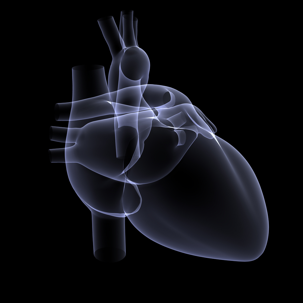 Aortic Regurgitation: Causes, Symptoms and Treatment | HealthSoul