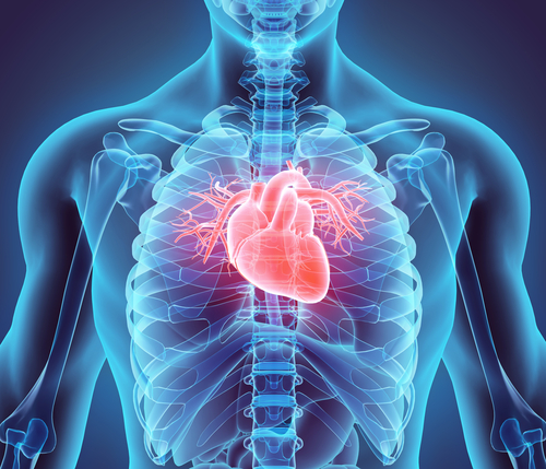 Treatment of Atrial Septal Defects and Patent Foramen Ovale | HealthSoul