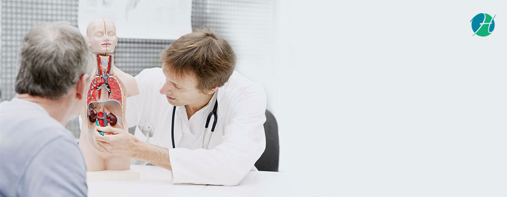 Learn about a Nephrologist and Kidney Diseases They Treat | HealthSoul