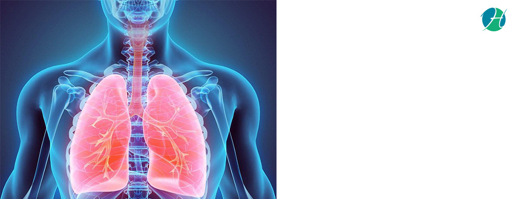 Mesothelioma: Risk Factors and Treatment   HealthSoul
