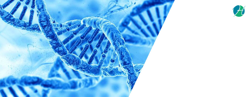 Hereditary Cancer Testing: A beginning for prevention and cure ! | HealthSoul