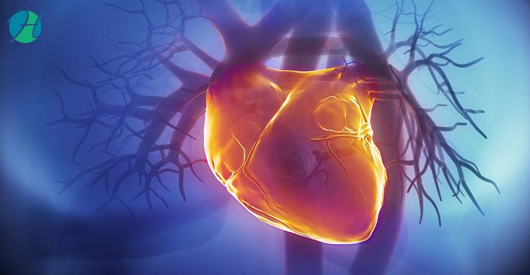Cardiac Risk Assessment | HealthSoul