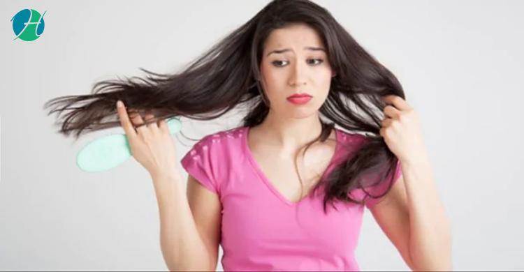 Diet for Hair Loss Prevention   HealthSoul